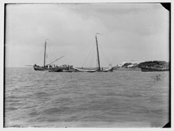 Pampus, foto Jacob Olie, 1890